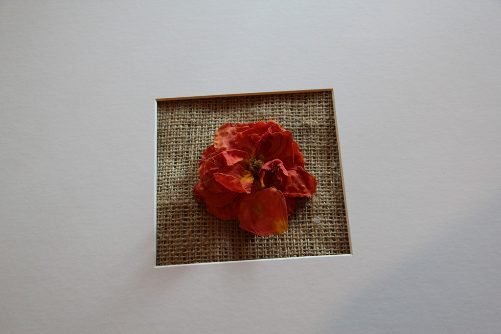 Diy wedding flower preservation and pressing supernovabride i cut myself and my finger started bleeding and i bled right onto the back of the matting so take caution kids diy flower preservation solutioingenieria Image collections